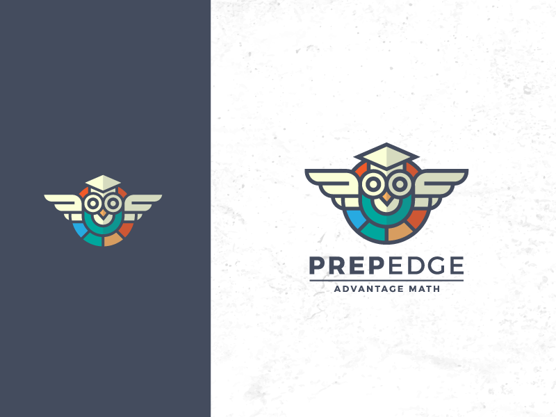 smart owl logo design