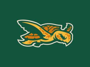e-sport turtle logo design